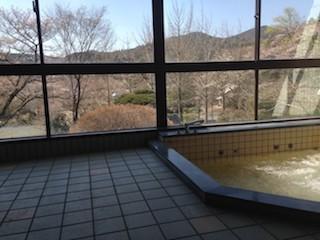 福島・南相馬市の旅館 抱月荘 浴場写真2